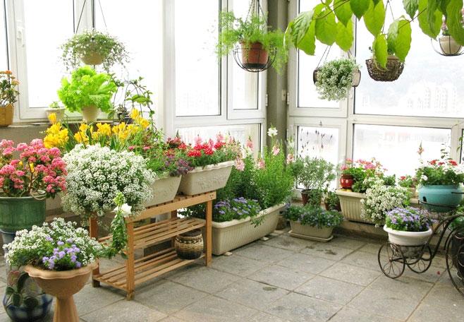 你家阳台还在晾衣服?如今阳台都这样设计了,美观又实用!